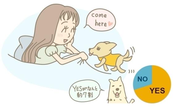 ペットともっと一緒にいるために、私たちができることは何でしょう。