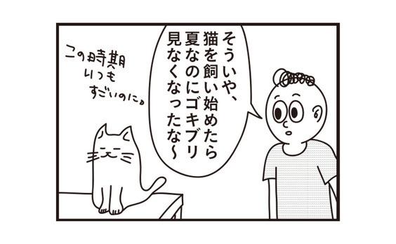 ペットあるあるマンガ④「猫と暮らすと見なくなるもの」