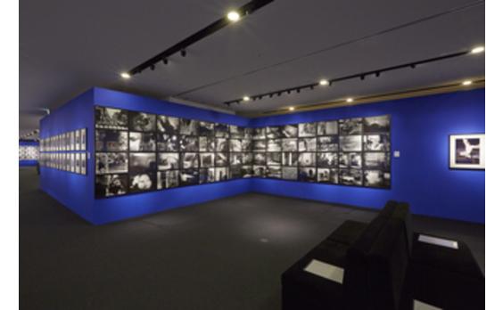 東京都内で個性豊かな写真イベントが続々~「Photo Weeks Tokyo」