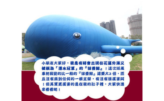 台北に巨大クジラ登場、高雄のアヒルに負けるな!