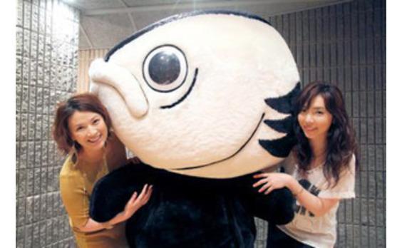 高知県PRキャンペーン第2弾「高知家の唄」が完成~島崎和歌子さんが4年ぶりに歌声を披露!!