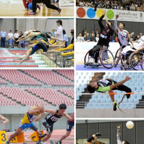 PAJが「パラリンピック選手の競技環境調査」を発表   選手の経済的負担は年147万円