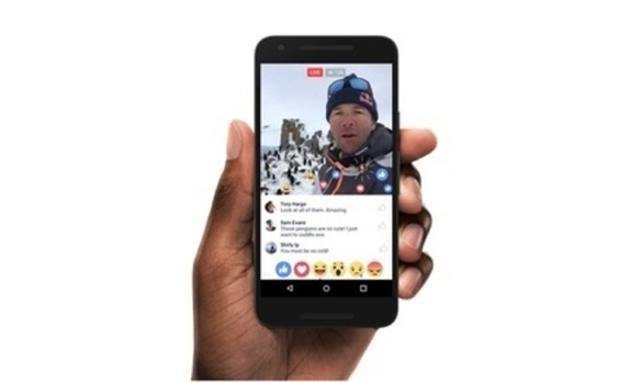 ライブ動画でコンテンツはさらに進化する