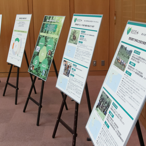 開発途上国の森林を守るソーシャル ビジネスを提案せよ