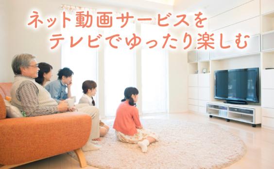 家庭のテレビ受像機でネット動画を見ていますか?