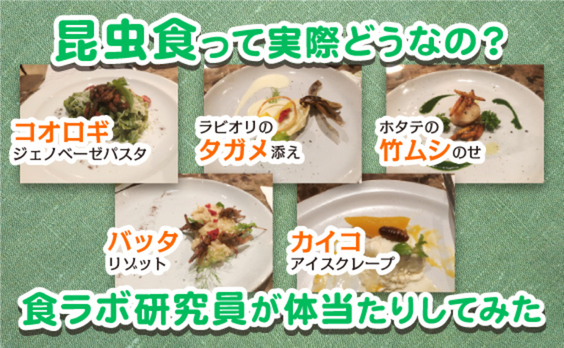 実際どうなの?未来のスーパーフード、昆虫食