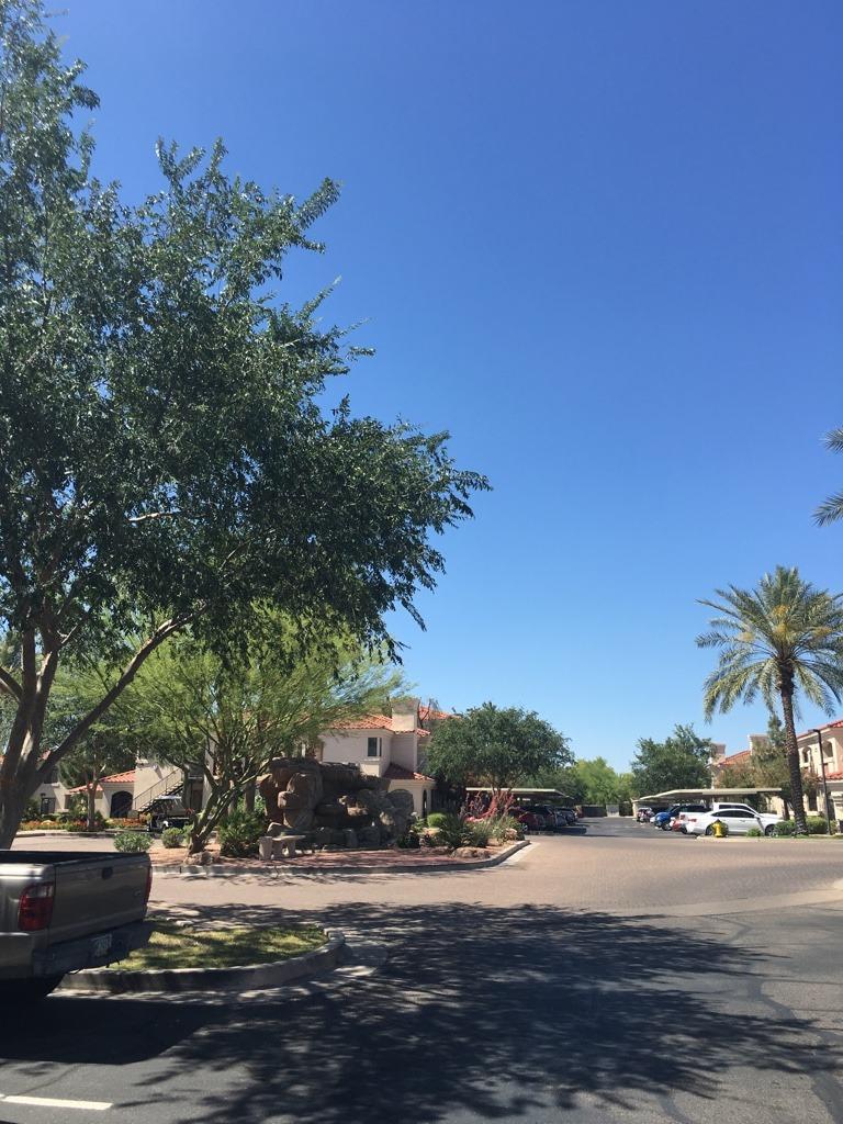 すでに40度を超えるアリゾナの街。これからの毎日が楽しみでもあり、怖くもあります。