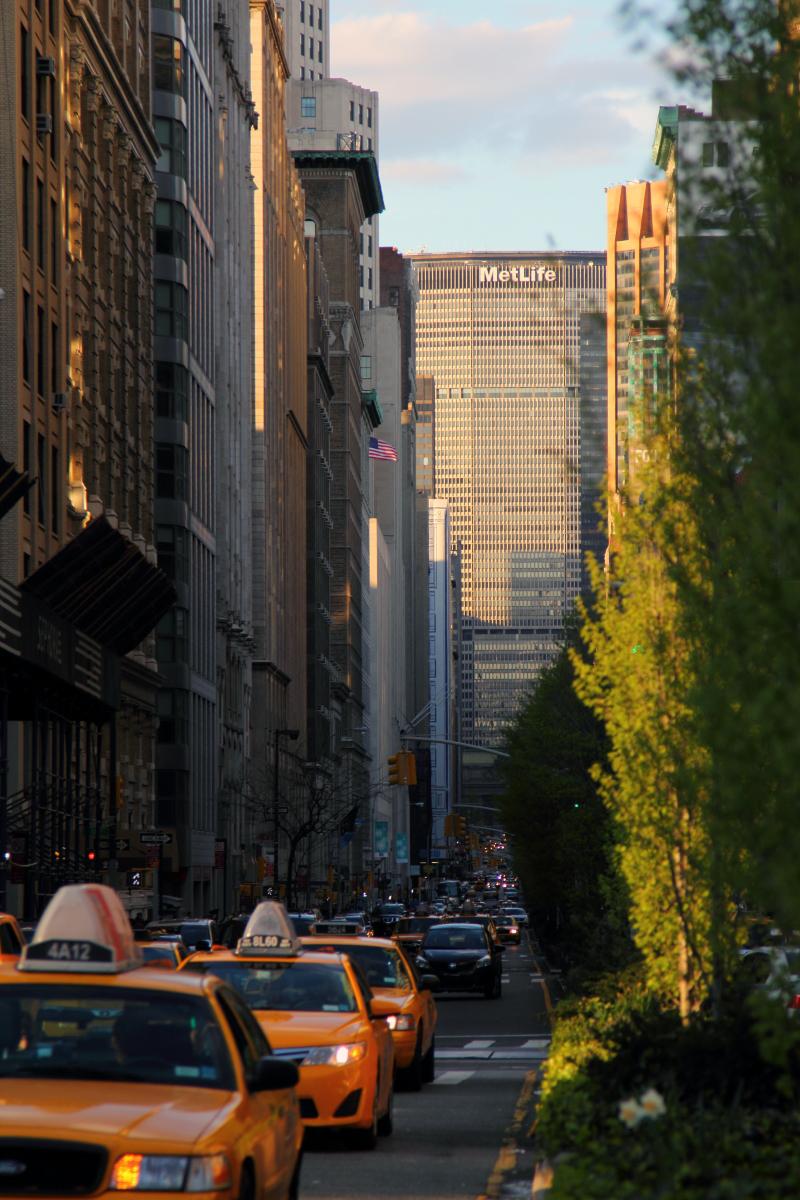 しまった、ラウルとミハイの別アングルの写真撮るの忘れてた…。 ええと、「ニューヨークに行きたいかーっ!」という感じの写真を、かわりに。