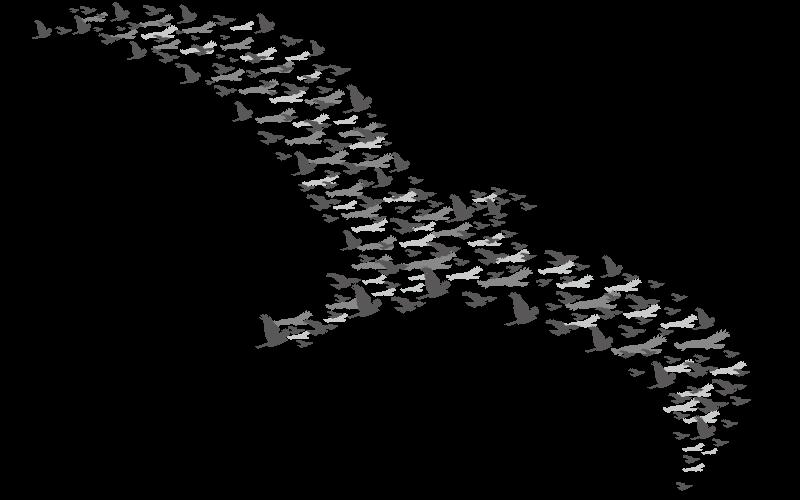 鳥の大群に例えられる創発
