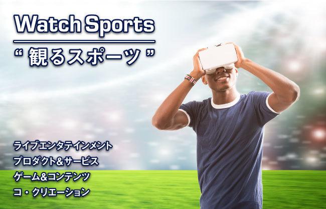 観るスポーツ