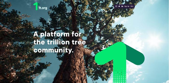 世界経済フォーラムの立ち上げた1兆本の植樹をする(1t.org1t.orgウエブサイトより引用)