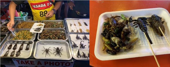 タイの屋台で売られている昆虫料理