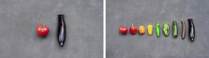 野菜の形状・色の違いをなだらかに