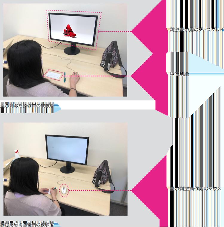 STP実験イメージ