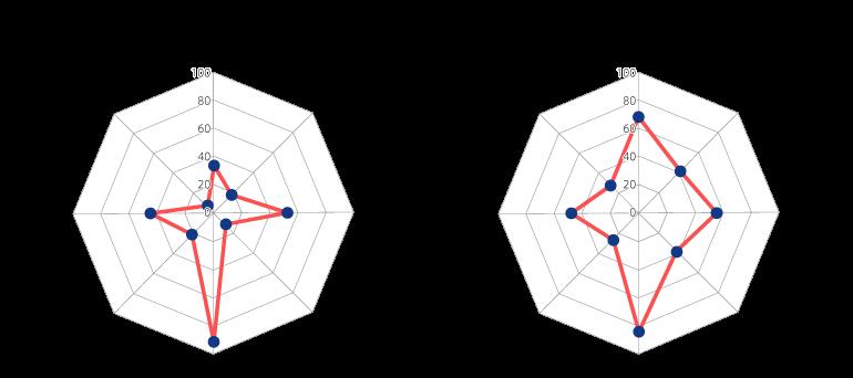 図3:オクトパスモデル <クロスの例>