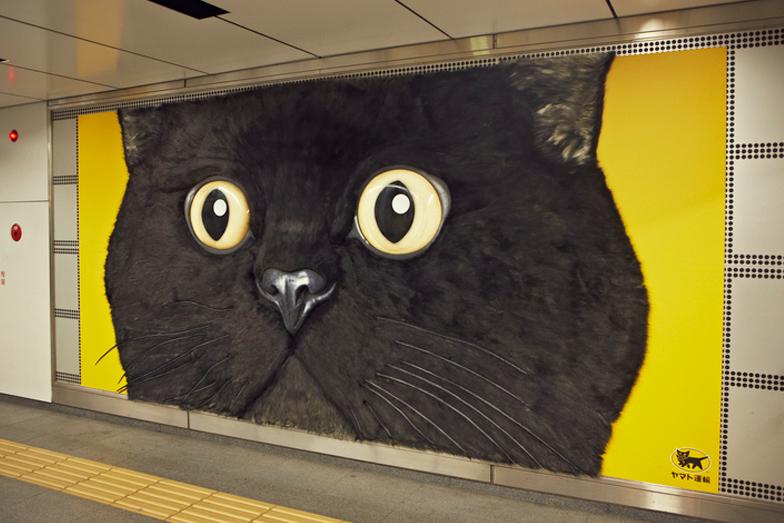 巨大クロネコに会いに  渋谷に急げ!